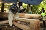 Canoe making progresses on Masahet copy