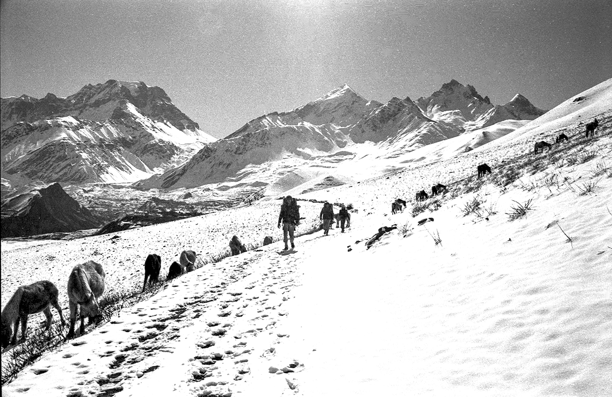 Jomoson Trek  1981_20 copy.jpg